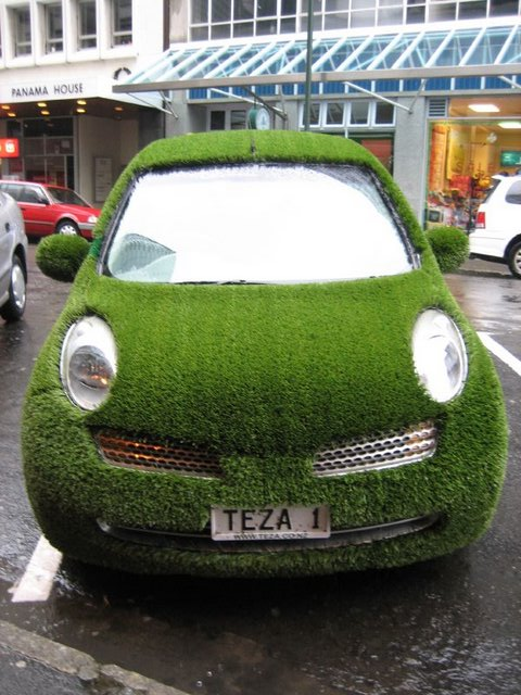 Grass Car for ALA Insurance